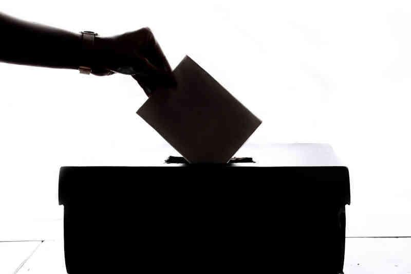 Style kierowania Golemana - styl demokratyczny